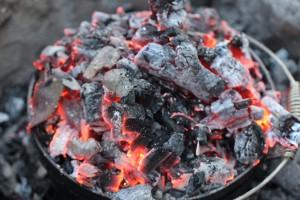 Camp Oven Coals