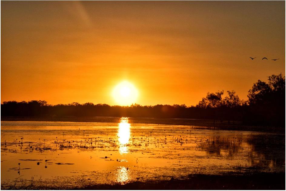 Leichhardt Lagoon at Sunset