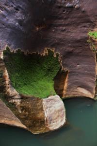 cobbold gorge 131